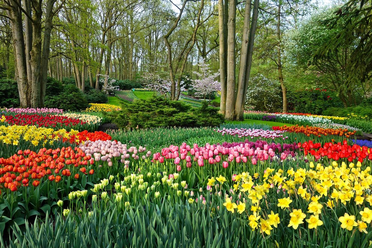 Best gardens in Europe