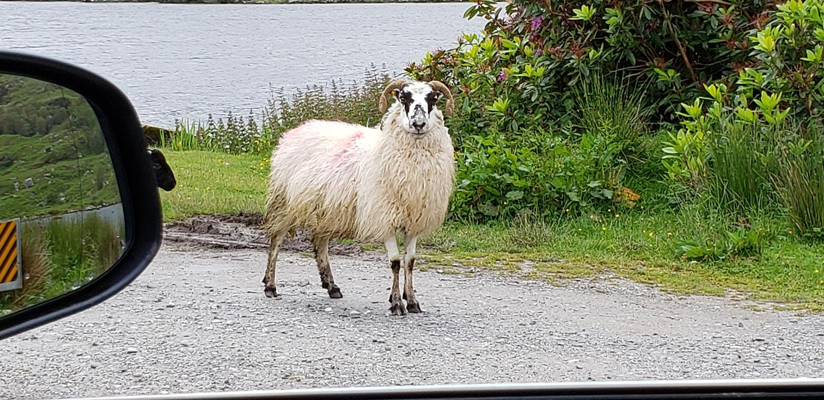 Kenmare vacation, Ireland Untour
