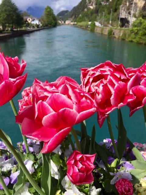 Switzerland spring 2021