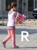 Rose vendor, Istanbul Untour
